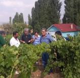ORMAN VE KÖYİŞLERİ KOMİSYONU - Torku Meyve Suyu, Sirke Ve Pekmek Üretim Tesisi Üretime Başladı