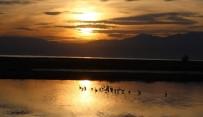 BEYŞEHIR GÖLÜ - Beyşehir Gölü'nün Sonbahar Konukları Göç Etti