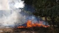 KAMYON LASTİĞİ - Çöplük Yangını Ucuz Atlatıldı