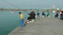 OLTA - Olta Balıkçıları İskelelere Akın Etti