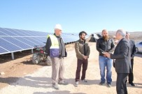 ENERJİ BAKANLIĞI - Vali Zorluoğlu, Güneş Enerji Santralinde İncelemelerde Bulundu