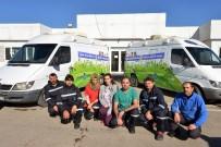 SOKAK HAYVANI - Yaralanan Sokak Hayvanlarının İmdadına Büyükşehir Yetişiyor