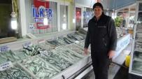 GıRGıR - Çinekop Bolluğu Balıkçının Yüzünü Güldürdü