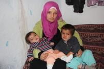 HARABE - Türkiye'ye Sığınan Türkmen Annenin İsteği Gerçek Oldu
