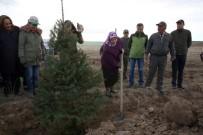 Gönül Elçilerinden 15 Temmuz Şehitleri'ne Hatıra Ormanı