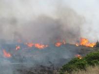 ŞİDDETLİ LODOS - Çeşme'de Arazi Yangını