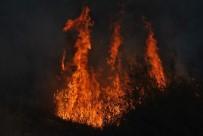 ORMAN YANGıNLARı - Doğu'da Sibirya Soğukları, Batı'da Kurak Ve Sıcaklık Nedeniyle Örtü Yangınları