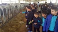 PıNAR SÜT - Minik Öğrenciler Süt Üretimini Öğrendi