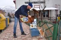YEŞILKENT - Bozüyük Belediyesi Sokak Hayvanlarının Aç Ve Susuz Kalmalarına Engel Oluyor