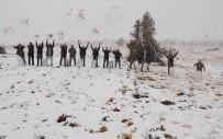 AYDOĞMUŞ - Mersin'e Mevsimin İlk Karı Düştü