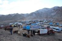 ARABA LASTİĞİ - Hayvan Pazarında Dondurucu Soğuk Çileye Dönüştü