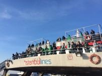 TİMSAH - İstanbul'a Akın Ediyorlar!