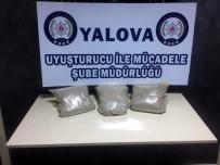 İRAN - Yalova'da Uyuşturucu Operasyonu