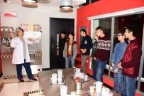 SIMÜLASYON - Yeşil Düzce Öğrencileri İstanbul'da
