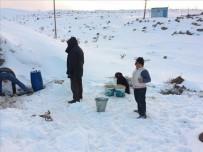 Buz Altında Su Arıyorlar