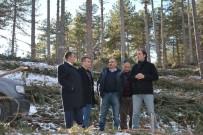 Emet'in Ormanlarını İnceledi