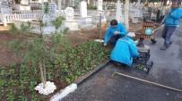 HERCAI - Güldede Mezarlığında Özenli Çalışma