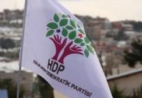 HDP - HDP'li vekil yeniden gözaltına alındı