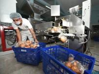 KEPEKLİ EKMEK - MER-EK'de Yedi Çeşit Ekmek Üretiliyor