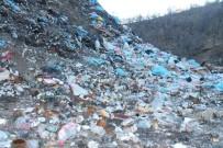 Habur Çayı'nda Endişe Verici Kirlilik