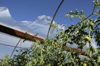 KARADERE - Seydikemer'de Fırtına Seralara Zarar Verdi