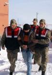 Ardahan'da Hayvan Kaçakçılarına Suçüstü