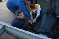 SAHİL YOLU - Rize'nin Ardeşen İlçesinde Trafik Kazası Açıklaması 1 Trafik Polisi Yaralı