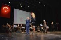 HASAN YILMAZ - Şehidan-I Şeb-İ Arus Programında Şehitler Anıldı