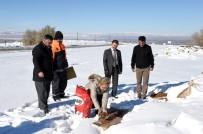AHMET ÇAKıR - Sokak Hayvanları İçin Doğaya Yem Bırakıldı