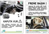 BİYOLOJİK ÇEŞİTLİLİK - Sokak Hayvanlarının Rehabilitasyonu Çalışması