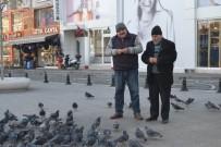 BEKIR YıLMAZ - Duyarlı Taksiciler 2 Yıldır Güvercin Besliyor