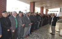 GIYABİ CENAZE NAMAZI - Manavgat'ta Şehitler İçin Gıyabi Cenaze Namazı Kılındı