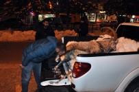 DAĞ KEÇİSİ - Pülümür Vadisi'nde Bir Dağ Keçisi Kaçak Avcıların Hedefi Oldu