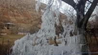 Ağaçlar Buz Tutunca Kartpostallık Görüntüler Oluştu