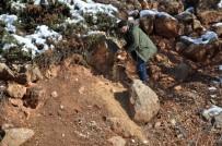 Tunceli'de Yaban Hayvanları İçin Doğaya Yem Bırakıldı