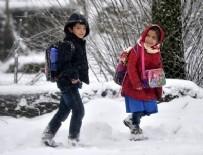 ÖZEL OKUL - Bu illerde okullar tatil edildi