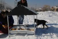 SOKAK HAYVANLARI - Doğa Dostu Belediye'den Hayvanlara Gıda Desteği