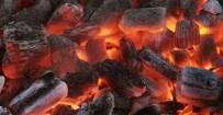 ÖLÜM HABERİ - Karbonmonoksit Gazından Zehirlenen Yaşlı Çift Öldü