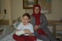 KÜÇÜK ÇOCUK - 7 Yaşındaki Çocuk Pitbull Saldırısına Uğradı