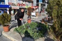 ÇAY OCAĞI - Caddede Organik Tarım