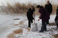 Cihanbeyli Belediyesi Kuşlara Yem Bıraktı