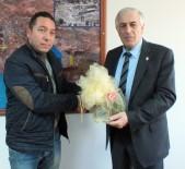 HAKAN KILIÇ - Karadenizliler Derneği İle Belediye Hamsi Şenliğinde Hem Fikir…