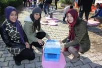 Öğrencilerden Sokak Kedilerine Ev