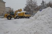 ORHAN BULUTLAR - Palandöken Belediyesi Kamyonlarla Şehir Dışına Kar Taşıyor