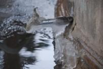 KAR MASKESİ - Tokat Buz Tuttu