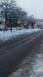 Güroymak'ta Dondurucu Soğuklar
