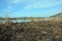 ORMANA - Kuş Cenneti Kül Oldu