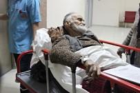 MUSTAFA DEMIR - Bartın'da Yaşlı Adam, İki Ayının Saldırısına Uğradı