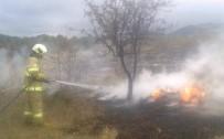 Burhaniye'de Kıyı Yangını
