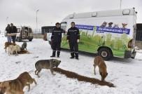 BAĞLUM - Büyükşehir'den, Sokak Hayvanlarına Yem Desteği